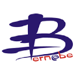Bernabe Informatica